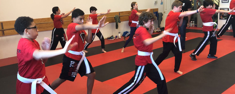 Self Defense Training for Teens in Chevy Chase MD, Self Defense Training for Teens near Washington DC, Self Defense Training for Teens near the DMV area, Self Defense Training for Teens near Bethesda MD, Self Defense Training for Teens near Silver Springs MD